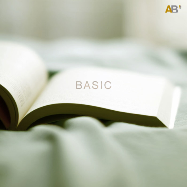 libro basic